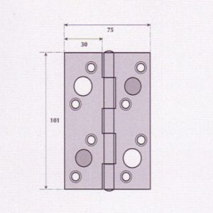 Security Hinge - G9523